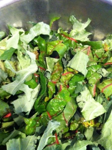 Organic Swiss chard and kale from Martha's vegetable greenhouse.